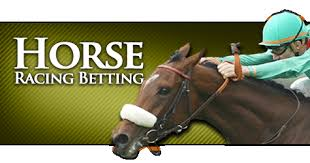 How to Bet on Horses – A Horse Racing Betting Guide