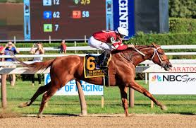 Betting on the Woodward Stakes Horse Racing Event