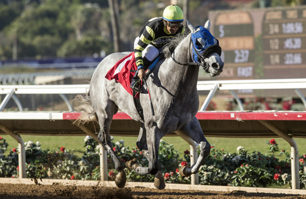 Diana Stakes Odds, Picks, and Predictions