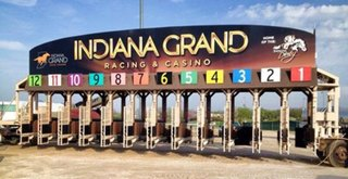 Indiana Derby- Odds, Picks, and Predictions
