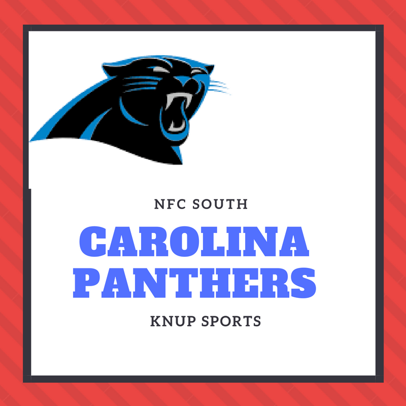 NFL Team Preview- Carolina Panthers