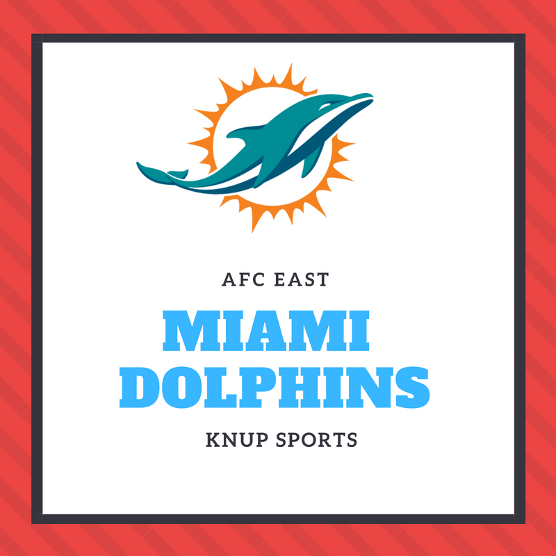 NFL Team Preview- Miami Dolphins
