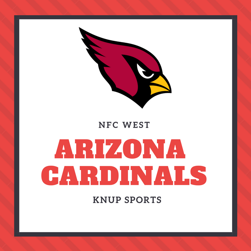 NFL Team Preview- Arizona Cardinals