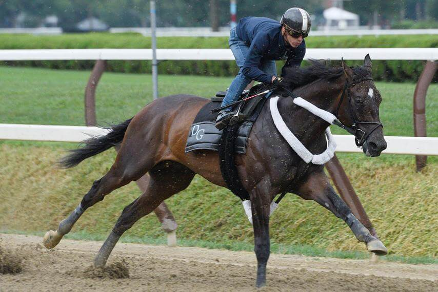 Travers Stakes Odds, Picks, and Predictions