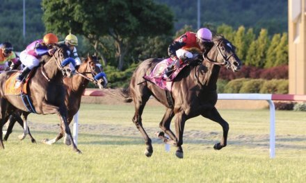 The Penn Mile Stakes Betting Preview